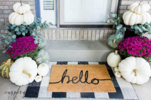 best doormat for dirt